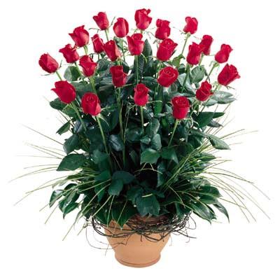 İsparta uluslararası çiçek gönderme  10 adet kirmizi gül cam yada mika vazo