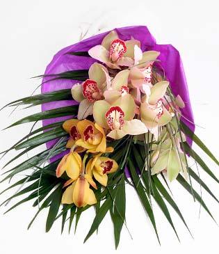 İsparta cicekciler , cicek siparisi  1 adet dal orkide buket halinde sunulmakta
