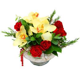 İsparta çiçek gönderme  1 adet orkide 5 adet gül cam yada mikada