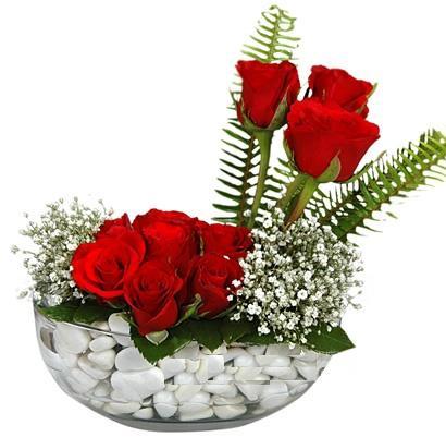 cam içerisinde 9 adet kirmizi gül  İsparta çiçek siparişi vermek