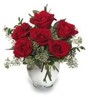 Vazo içerisinde 5 adet kırmızı gül  İsparta çiçekçi mağazası