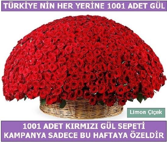 1001 Adet kırmızı gül Bu haftaya özel  İsparta İnternetten çiçek siparişi