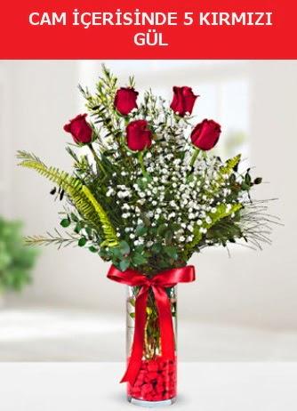 Cam içerisinde 5 adet kırmızı gül  İsparta çiçek siparişi sitesi