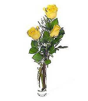 İsparta internetten çiçek siparişi  3 adet kalite cam yada mika vazo gül