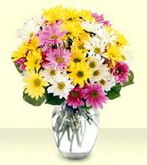 İsparta internetten çiçek siparişi  mevsim çiçekleri mika yada cam vazo