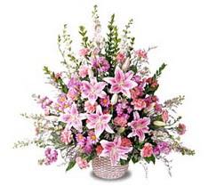 İsparta çiçek siparişi sitesi  Tanzim mevsim çiçeklerinden çiçek modeli