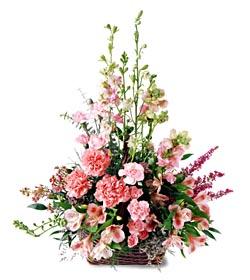 İsparta ucuz çiçek gönder  mevsim çiçeklerinden özel