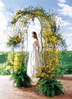 İsparta internetten çiçek satışı  güller ve mevsim çiçegi