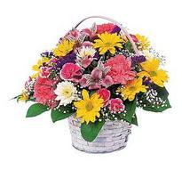 İsparta çiçek , çiçekçi , çiçekçilik  mevsim çiçekleri sepeti özel