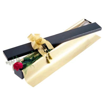 İsparta uluslararası çiçek gönderme  tek kutu gül özel kutu