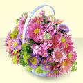 İsparta yurtiçi ve yurtdışı çiçek siparişi  bir sepet dolusu kir çiçegi  İsparta çiçek gönderme sitemiz güvenlidir