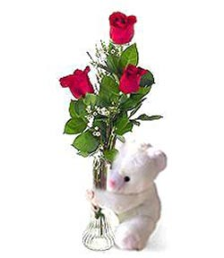 oyuncak ve 3 adet gül  İsparta çiçek siparişi sitesi