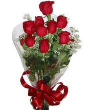 9 adet kaliteli kirmizi gül   İsparta online çiçekçi , çiçek siparişi