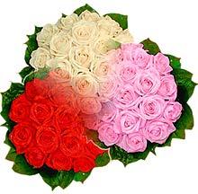 3 renkte gül seven sever   İsparta çiçek , çiçekçi , çiçekçilik