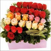 15 adet renkli gül ve cam   İsparta çiçekçi mağazası