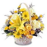 sadece sari çiçek sepeti   İsparta çiçek gönderme sitemiz güvenlidir