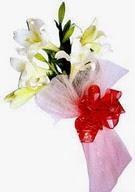 İsparta çiçek , çiçekçi , çiçekçilik  ince vazoda gerbera ve ayi