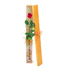 ince  kutuda  1  gül   İsparta çiçek yolla