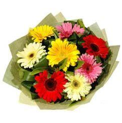9 adet karisik gerbera demeti  İsparta çiçek mağazası , çiçekçi adresleri