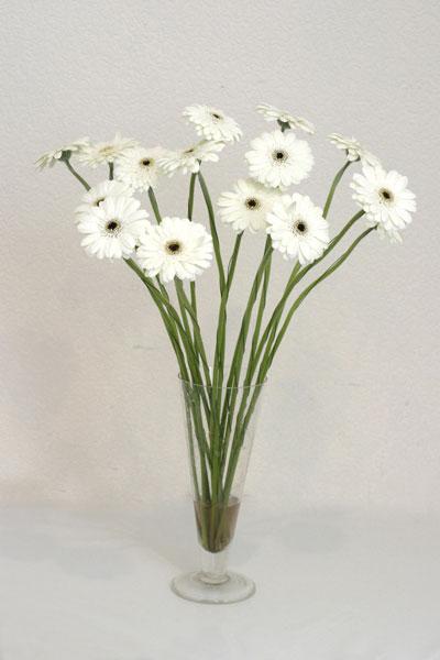 İsparta çiçek mağazası , çiçekçi adresleri  cam vazo içerisinde 17 adet sade gerbera