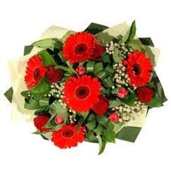 İsparta ucuz çiçek gönder   5 adet kirmizi gül 5 adet gerbera demeti
