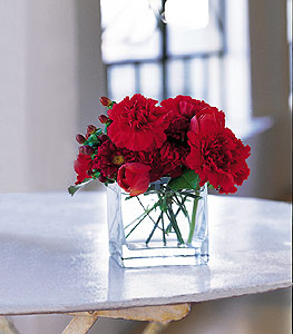 İsparta ucuz çiçek gönder  kirmizinin sihri cam içinde görsel sade çiçekler