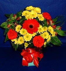 İsparta ucuz çiçek gönder  sade hos orta boy karisik demet çiçek