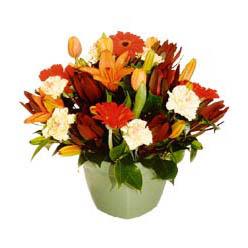 mevsim çiçeklerinden karma aranjman  İsparta çiçek yolla , çiçek gönder , çiçekçi