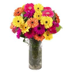 KARISIK GERBERALARDAN CAM VAZO TANZIMI  İsparta güvenli kaliteli hızlı çiçek