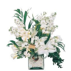 İsparta internetten çiçek siparişi  sadece beyazlardan olusmus mevsim cam yada mika tanzim