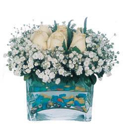İsparta çiçekçi mağazası  mika yada cam içerisinde 7 adet beyaz gül