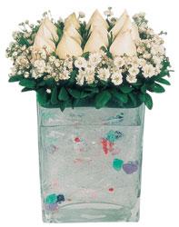 İsparta çiçekçi mağazası  7 adet beyaz gül cam yada mika vazo tanzim