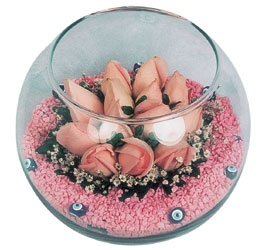 İsparta internetten çiçek satışı  cam fanus içerisinde 10 adet gül