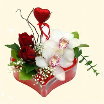 İsparta hediye sevgilime hediye çiçek  1 kandil orkide 5 adet kirmizi gül mika kalp