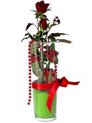 İsparta online çiçek gönderme sipariş  Cam yada mika içerisinde 9 adet kirmizi gül - sevdiklerinize özel