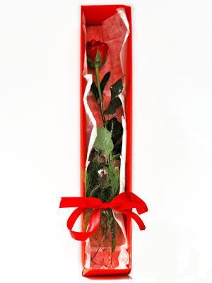 İsparta yurtiçi ve yurtdışı çiçek siparişi  1 adet kutuda gül