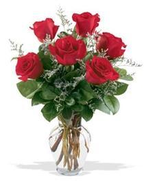 İsparta çiçek gönderme sitemiz güvenlidir  7 adet kirmizi gül cam yada mika vazoda sevenlere