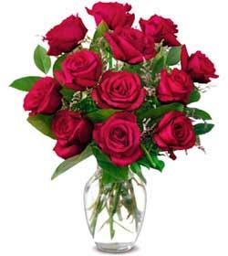 İsparta online çiçek gönderme sipariş  1 düzine kirmizi gül sevenlere özel vazo gülleri