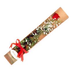 İsparta çiçek , çiçekçi , çiçekçilik  Kutuda tek 1 adet kirmizi gül çiçegi