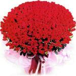 İsparta online çiçekçi , çiçek siparişi  1001 adet kirmizi gülden çiçek tanzimi