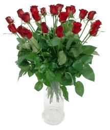 İsparta çiçekçi telefonları  11 adet kimizi gülün ihtisami cam yada mika vazo modeli