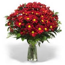 İsparta çiçek yolla  Kir çiçekleri cam yada mika vazo içinde
