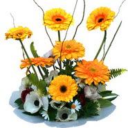 camda gerbera ve mis kokulu kir çiçekleri  İsparta çiçekçi telefonları