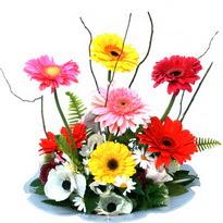 İsparta hediye çiçek yolla  camda gerbera ve mis kokulu kir çiçekleri