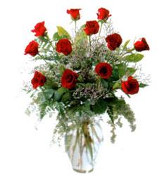 Vazo içerisinde 11 kirmizi gül  İsparta çiçek siparişi vermek