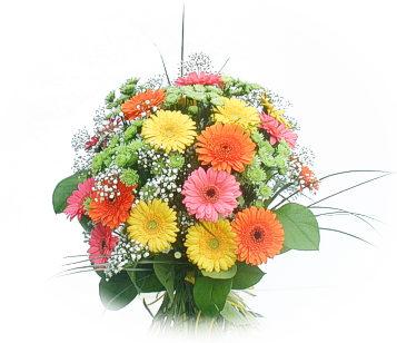 13 adet gerbera çiçegi buketi  İsparta online çiçek gönderme sipariş