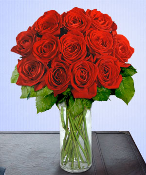 Anneme 12 adet cam içerisinde kirmizi gül  İsparta çiçek siparişi sitesi