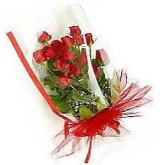 13 adet kirmizi gül buketi sevilenlere  İsparta çiçek siparişi vermek