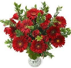 5 adet kirmizi gül 5 adet gerbera aranjmani  İsparta hediye çiçek yolla