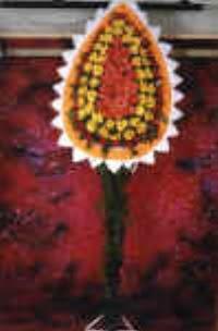 İsparta çiçek satışı  dügün açilis çiçekleri  İsparta çiçek , çiçekçi , çiçekçilik